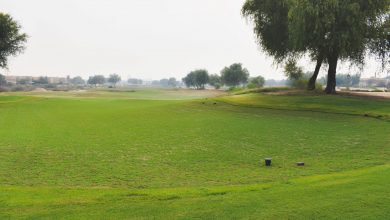 Arabian Ranches Desert Golf